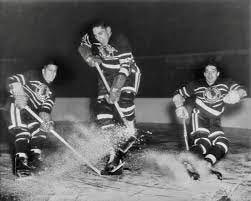 my first hockey game: stan fischler   puckstruck