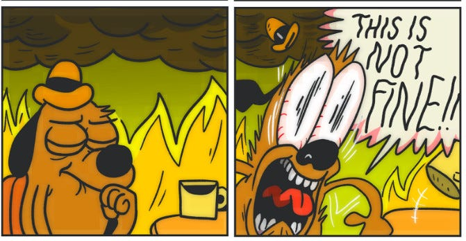 """2016 update from """"this is fine"""" dog: things are not, in fact, fine - Vox"""