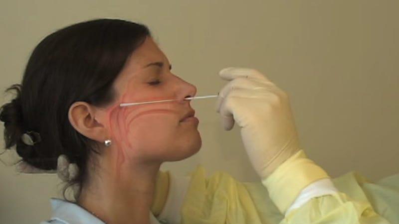 COVID-19: Doctor explains how the nasal swab procedure works