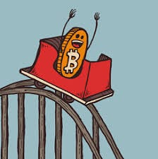 Image result for crypto rollercoaster