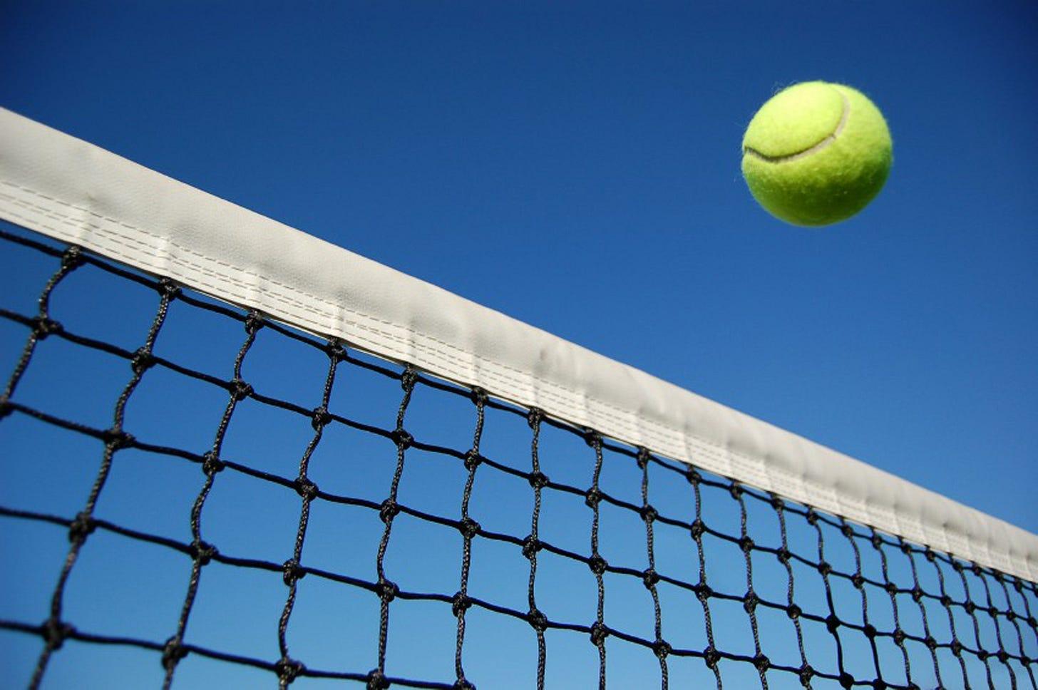 tennis-ball_net.jpg