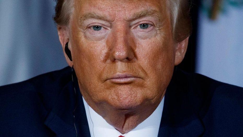 Image result for Trump illegitimate