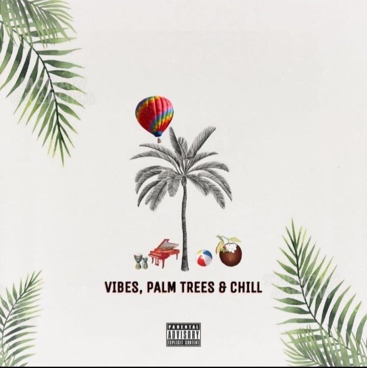 Vidarr - Music, Vibes, Palm Trees and Chill