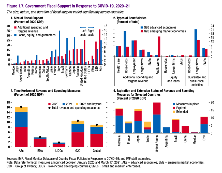 IMF Government Fiscal Support