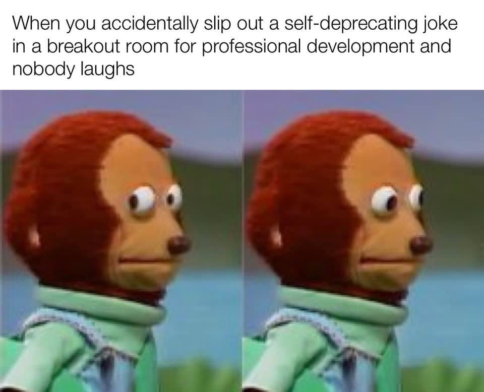May be an image of 2 people and text that says 'When you accidentally slip out a self-deprecating joke in a breakout room for professional development and nobody laughs'