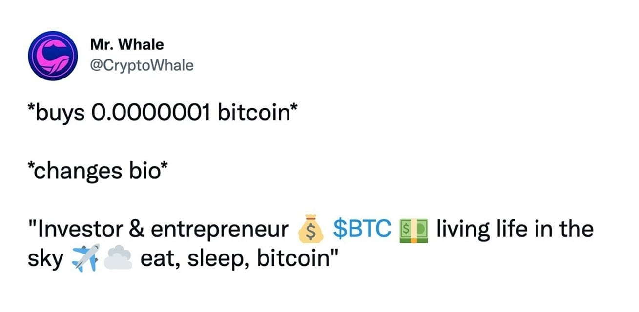 """May be an image of text that says 'Mr. Whale @CryptoWhale *buys 0.0000001 bitcoin* *changes bio* """"Investor & entrepreneur $ $BTC sky eat, sleep, bitcoin"""" living life in the'"""
