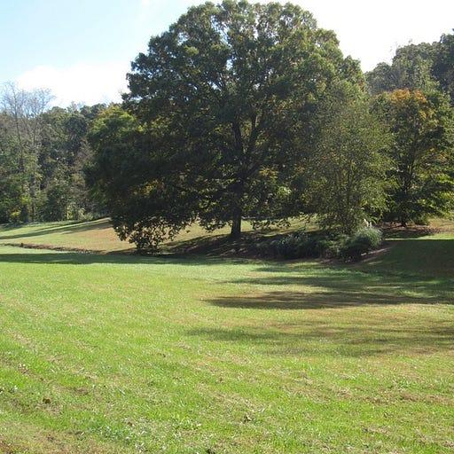 Tritt Park