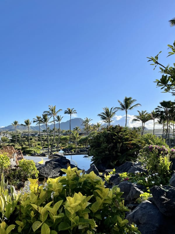 Remote work in Hawaii (Poipu)