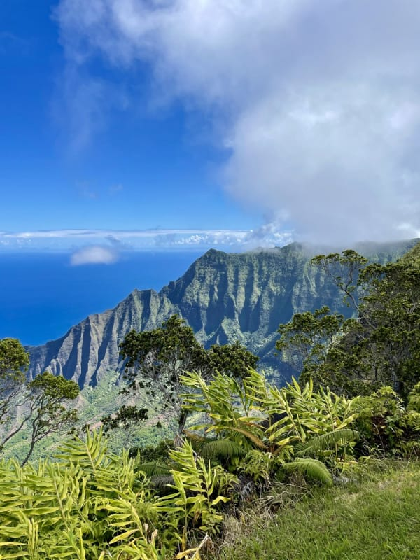 Remote work in Hawaii (Na Pali Coast)