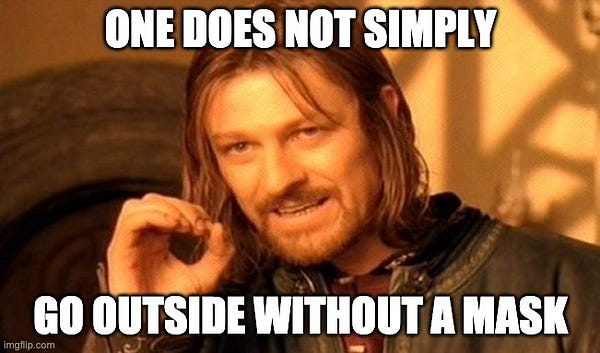 """Boromir saying """"One does not sipmly go outside without a mask"""""""
