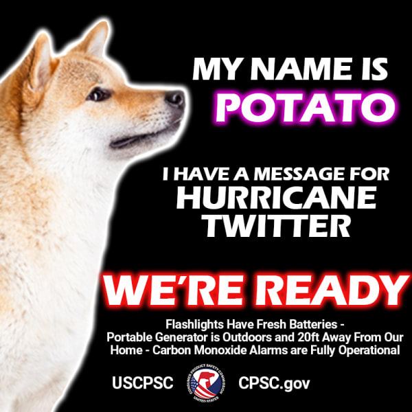 A dog named potato. The text reads: My name is potato. I have a message for hurricane twitter. We're ready. Flashlights have fresh batteries. Portable generator is outdoors and 20ft away from our home. Carbon monoxide alarms are fully operational.