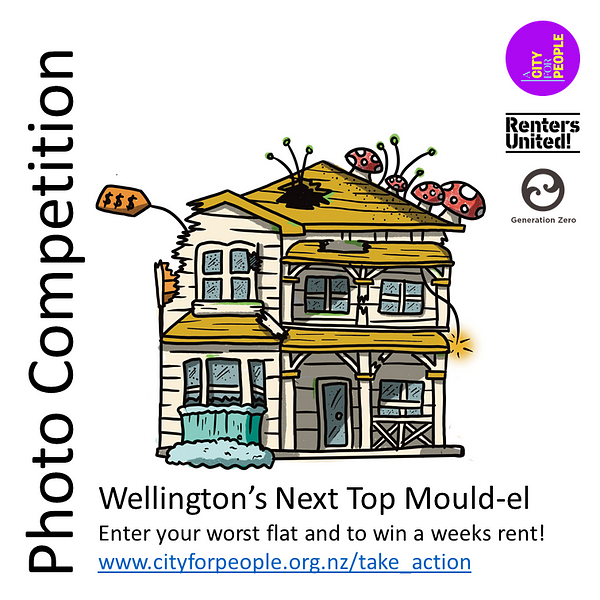 The image shows an illustration of an old house falling apart, with fungus growing off the top, holes in the roofs, a loose power cable, and a price tag attached to the side, on a blank background.  Text reads: Photo Competition. Wellington's Next Top Mould-el. Enter your worst flat and to win a weeks rent! www.cityforpeople.org.nz/take_action  The logos of A City For People, Renters United, and Generation Zero are displayed on the right side.