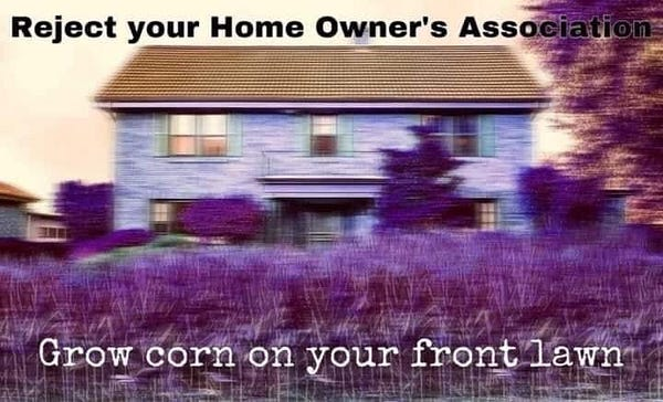 "Shaky bad picture of hold farm house with purple tint. It says ""Reject your home owners association. Grow corn on your front lawn"""
