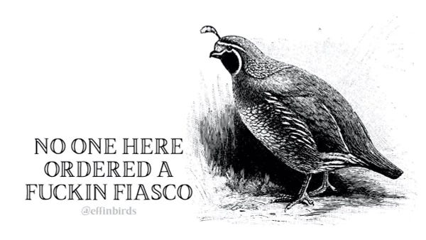 """A woodcut of a bird beside the text """"no one here ordered a fuckin fiasco"""""""
