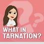 What in tarnation? w/Kassy Dillon