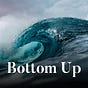Bottom Up by David Sacks