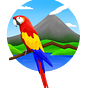 The Costa Rica Daily: Costa Rica News & Travel