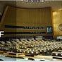 The UN Brief