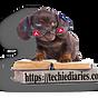 Angular Newsletter By Techiediaries