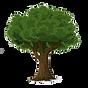 अर्थवृक्ष Newsletter