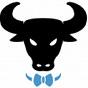 BowTied Bull