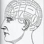 Feed Your Brain SF