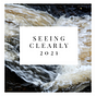 Seeing Clearly 2021