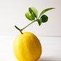 The Juice of One Lemon