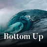 Bottom Up by David Sacks