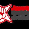 Newsletter de JSM