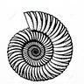 A Spiral Space