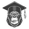 The Reading Ape