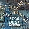 stardust by vicenzi