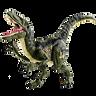 Raptor Velocity
