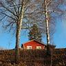 Aus Versehen Schweden