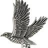 The Sterling Hawk