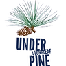 Under a Longleaf Pine