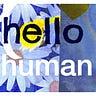 the hello human newsletter