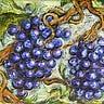 Tiny Vineyards