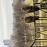 Red-Tails on the Fire Escape