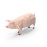 Pig on the Tracks
