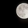 月球共識電子報