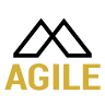 Agile Business Technology